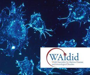 Waidid