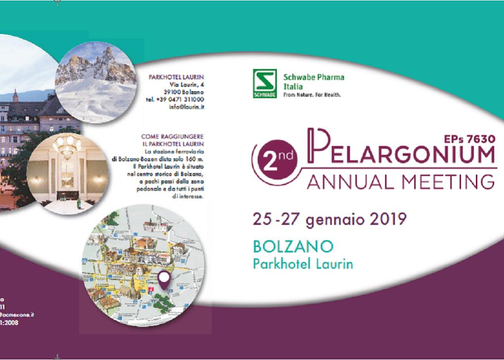 Pelargonium2019